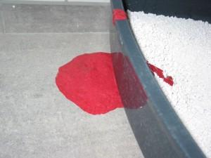 Blut statt durchfall